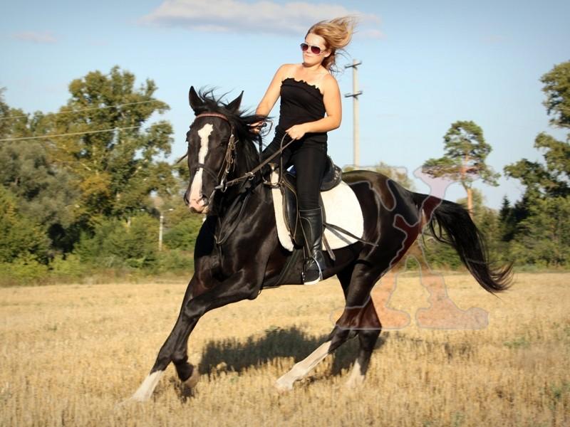 трах чем полезна верховая езда для женщин думаешь что